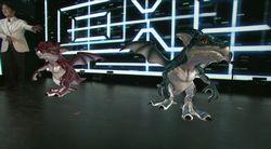 夏野氏と2匹のドラゴン